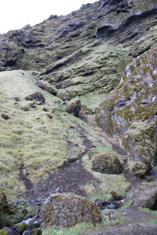 5-25-16 Rauðfeldar Canyon (12)