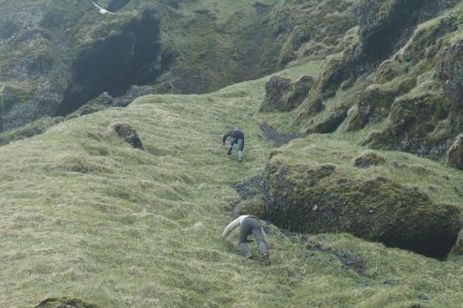 5-25-16 Rauðfeldar Canyon (16)