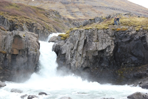 5-28-16 waterfall hike (4)