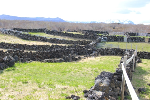 6-1-16 Myvatn sheepfold (3)