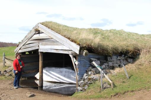 6-1-16 Myvatn sheepfold (5)