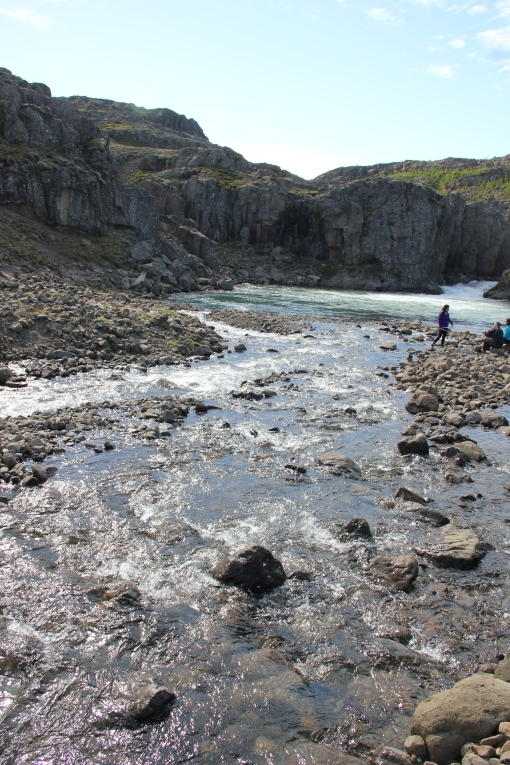 6-3-16 East fjords cold creek (3)