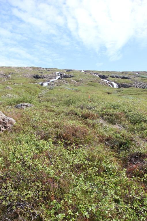6-3-16 Faskrudsfjordur hill hike (21)