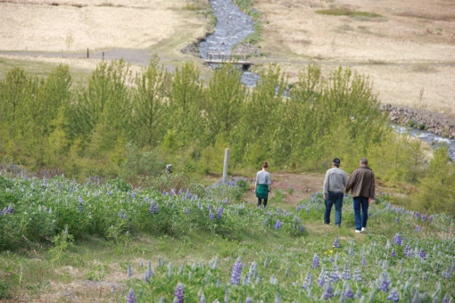 6-3-16 Faskrudsfjordur hill hike (51)
