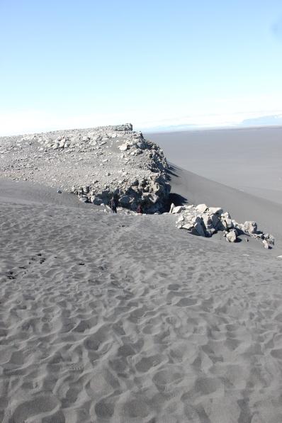 6-4-16 Cape Ingólfshöfði  (19)