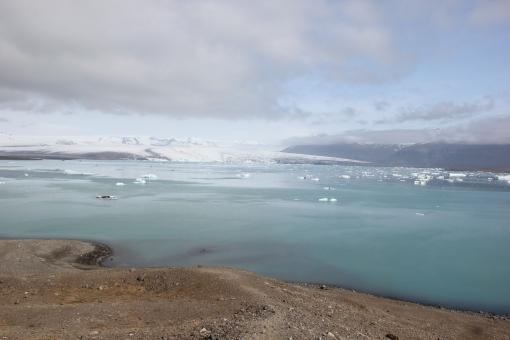 6-4-16 Jokulsarlon glacial bay  (2)