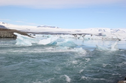 6-4-16 Jokulsarlon glacial bay (25)
